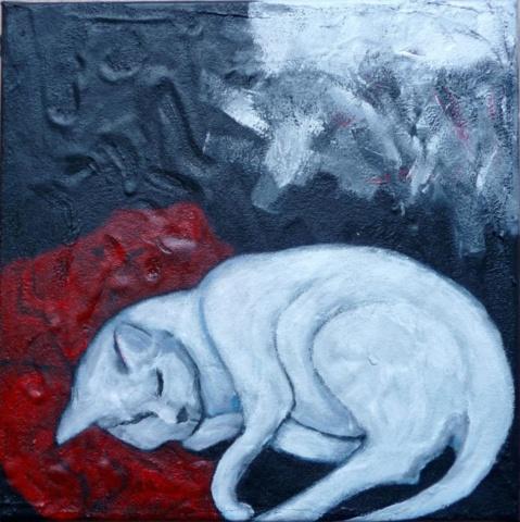Christina Kreymborg - Cat